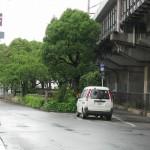 新太郎松碑