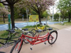 (写真)葉桜と旗とタンデム自転車