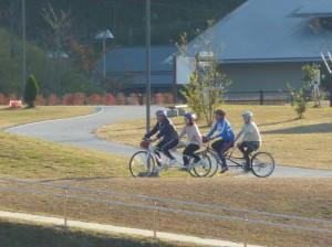 (写真)2台のタンデム自転車が走っています