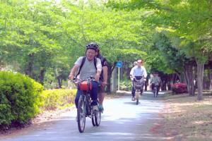 (写真)大野川緑陰道路を走っている
