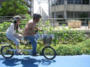 (写真)タンデム自転車で走行中