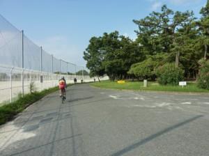 (写真)浜寺公園内