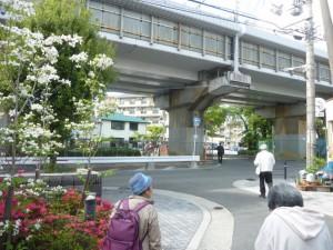 里道跡の先、新幹線の高架下に「新太郎松樋」が見えてきました。
