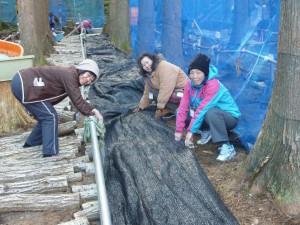 ボランティア活動は軽作業もあり、どなたでもご参加いただけます(昨年度の地元産業である原木シイタケ栽培復活のためのお手伝いの様子)