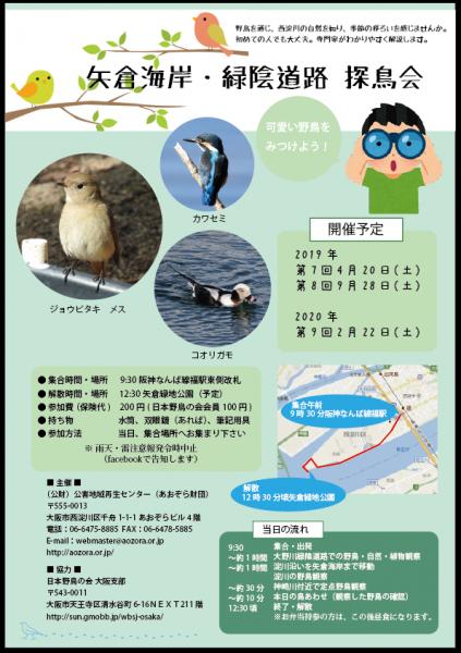 野鳥ちらし2019